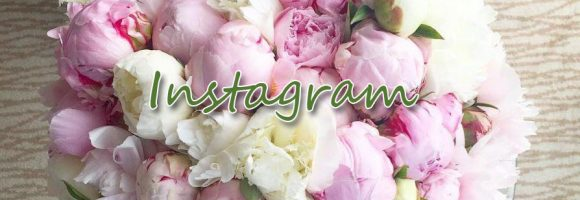 instagram_banner_made1